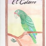 This image has an empty alt attribute; its file name is El-Cotorro-1.3-2-150x150.jpg