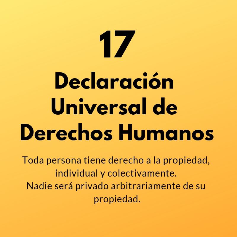 Artículo 17 de la Declaración Universal de Derechos Humanos