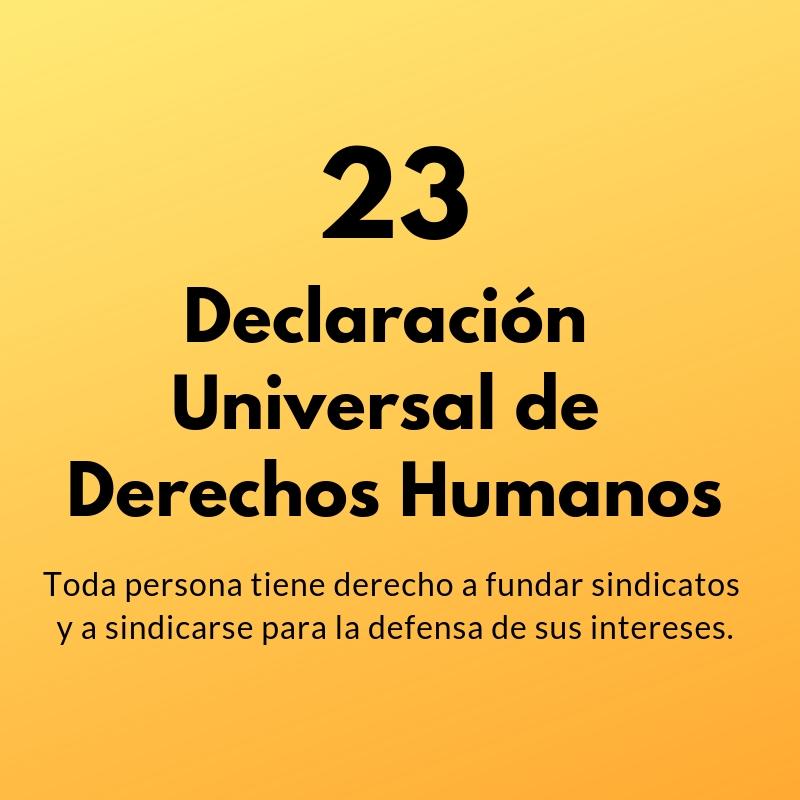 Artículo 23 de la Declaración Universal de Derechos Humanos