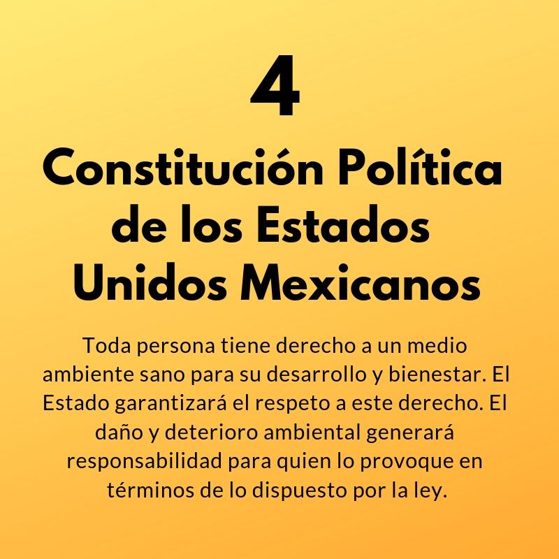 Artículo 4 de la Constitución Política de los Estados Unidos Mexicanos