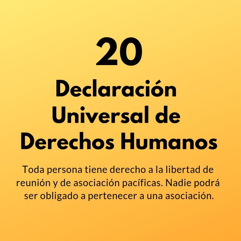 Artículo 20 de la Declaración Universal de Derechos Humanos
