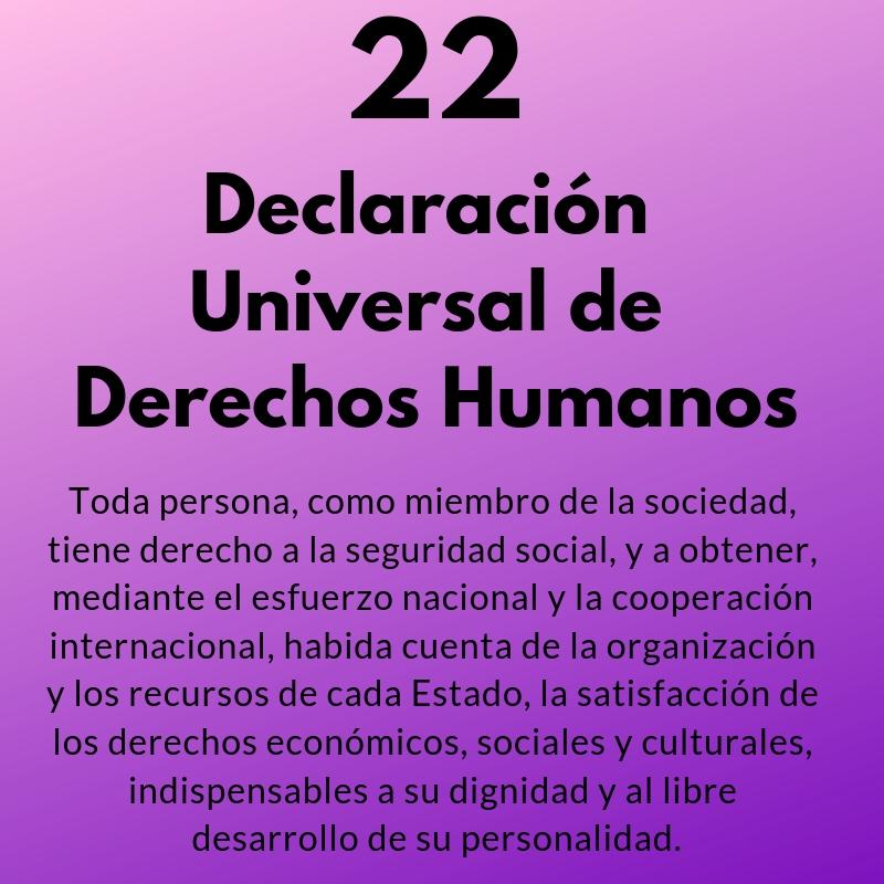 Artículo 22 de la Declaración Universal de los Derechos Humanos