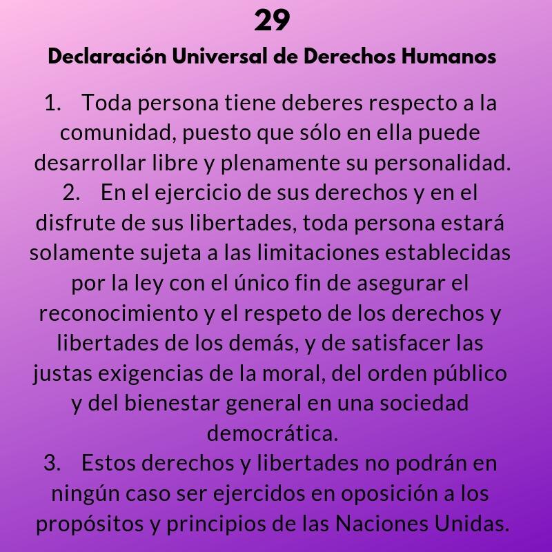 Artículos 29 y 30 de la Declaración Universal de los Derechos Humanos