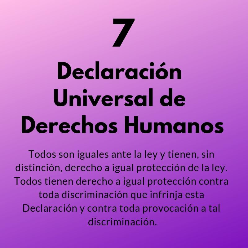 Artículo 7 de la Declaración Universal de los Derechos Humanos